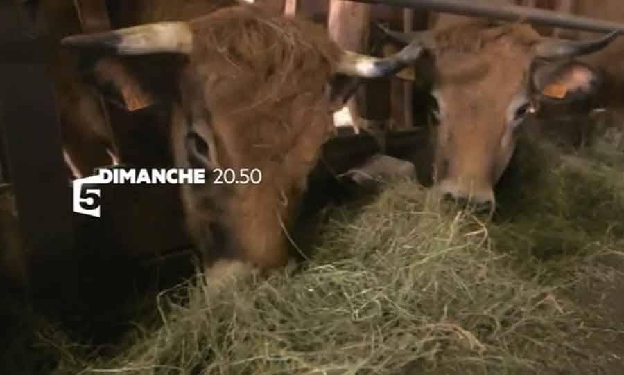 L'Ardèche et le Fin gras à l'honneur sur France 5 dimanche soir