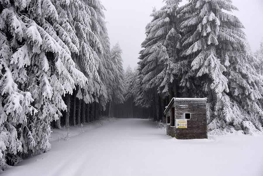 Meygal : les pistes de ski de fond accessibles à partir de jeudi