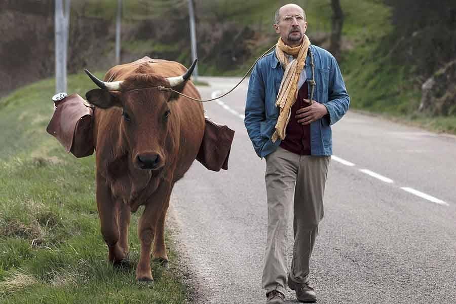 """Saint-Agrève : 2 euros pour voir le film """"La Vache"""" le 24 janvier"""