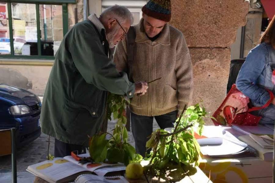Saint-Didier-en-Velay : venez en prendre de la graine toute la journée