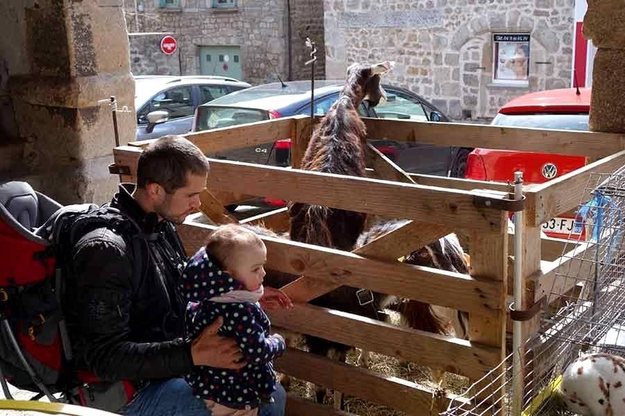 4e Fête des semences samedi à Saint-Didier-en-Velay