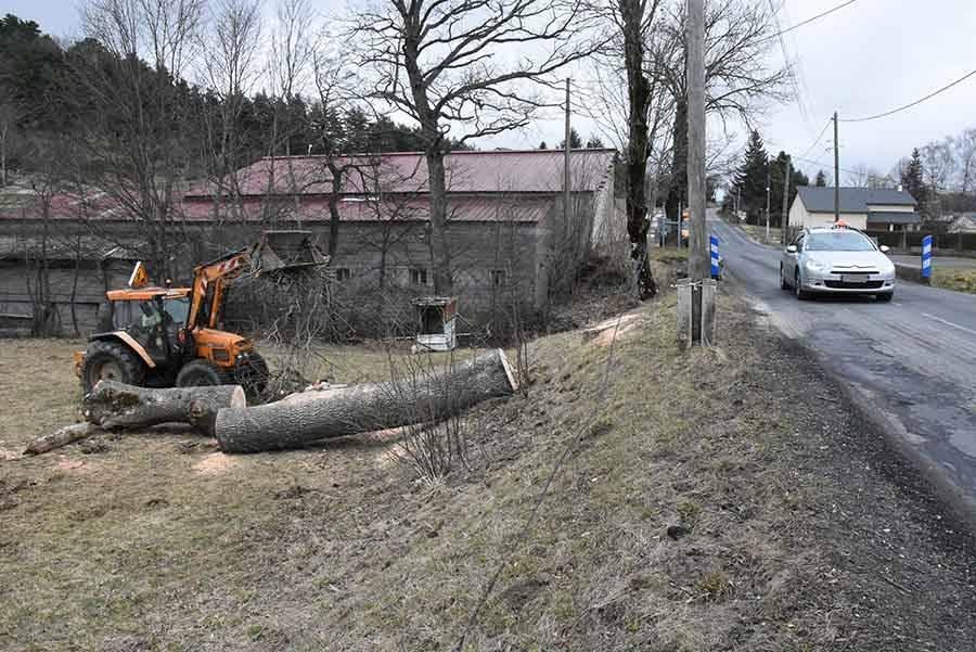 Des arbres abattus en prévision du doublement du pont de Desroys