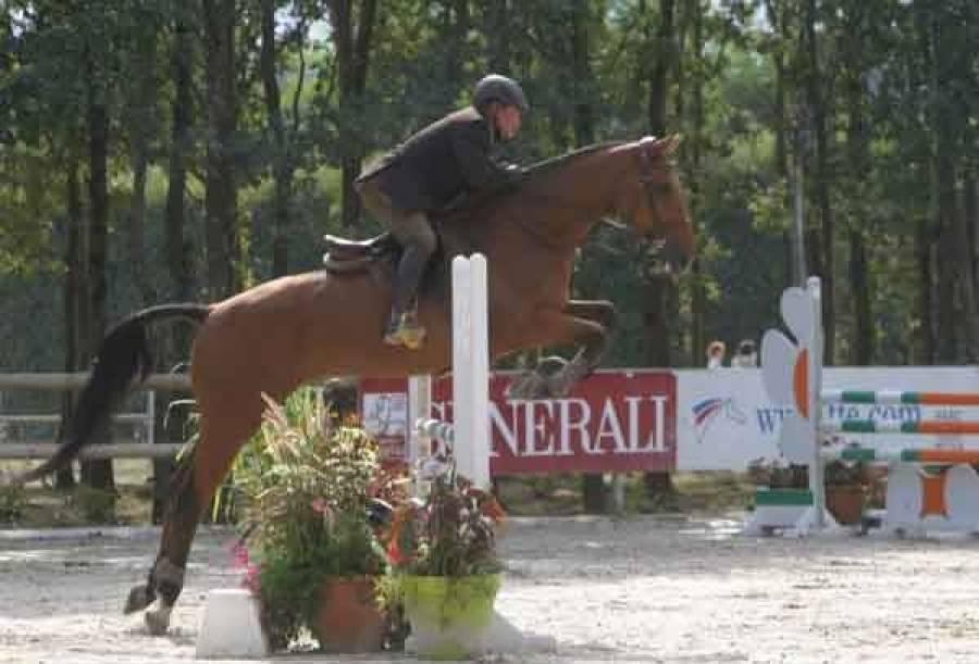 Equitation : un concours de sauts d'obstacles dimanche à Blavozy