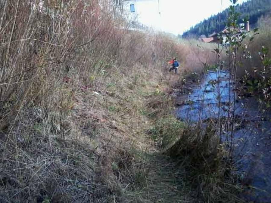 Riotord : des travaux d'entretien de la végétation sur les berges de la Dunière