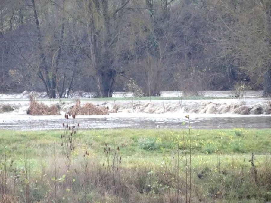 Des contes, des balades pour découvrir les zones humides à Rosières, Saint-Vincent, Chamalières...