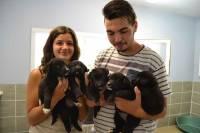 Betty et Rayan sont animaliers au refuge de la SPA.