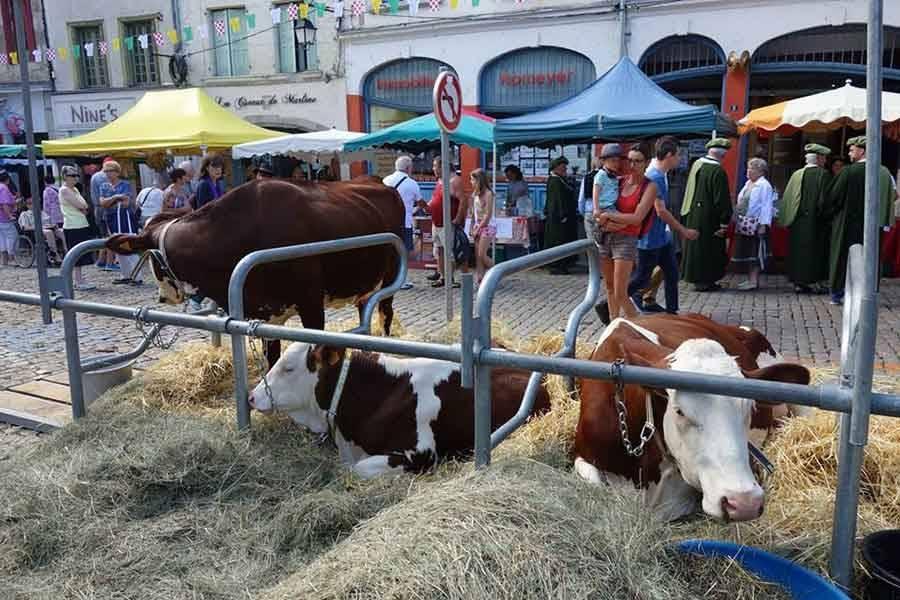 « La Ferme s'invite en ville » : l'opération fait son retour samedi et dimanche au Puy-en-Velay