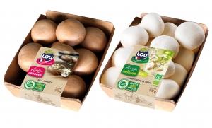 A Chaspuzac, l'entreprise Lou Légumes va faire pousser des champignons et 150 emplois