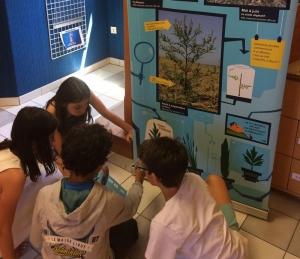 Education santé environnement : les actions de prévention de la Ligue de l'enseignement