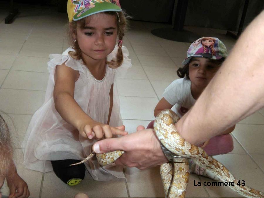 Retournac : découverte du zoo de Saint-Martin-la-Plaine pour les élèves de Charrées