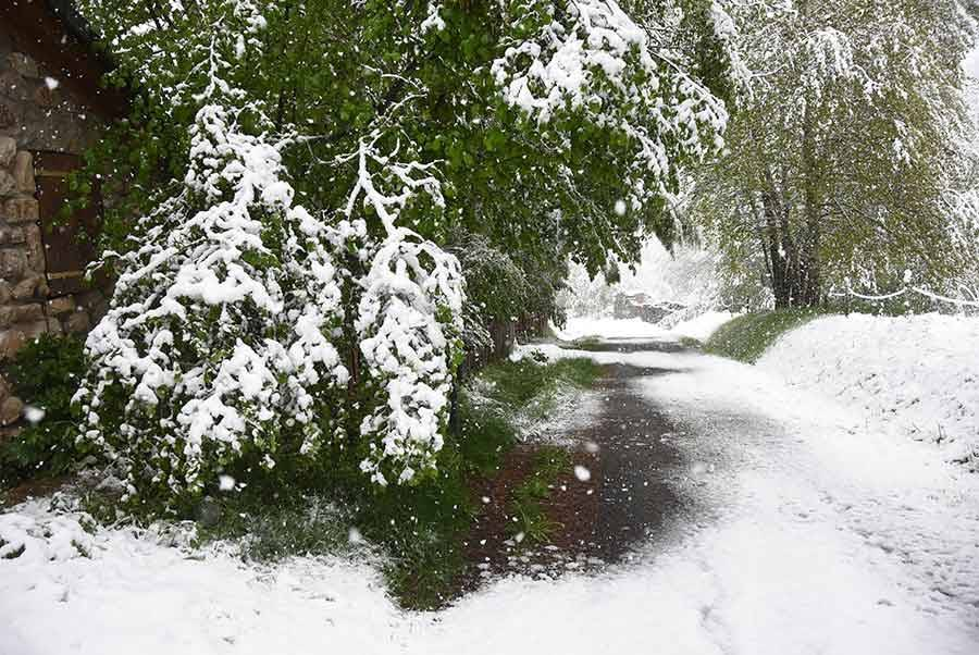 Un dimanche 13 mai sous la neige en Haute-Loire et Ardèche