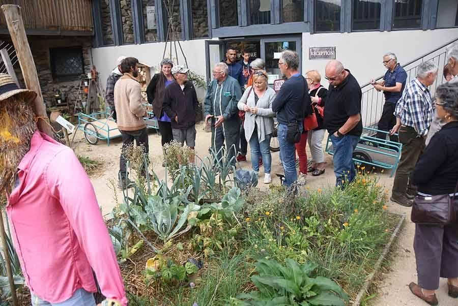 Chamalières-sur-Loire : ils participent à la réinsertion du chou Quintal d'Auvergne
