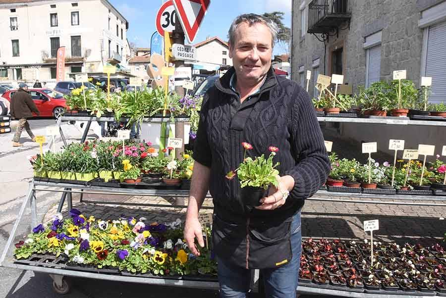 Vous pouvez même acheter des plants de pâquerettes, la mignonne fleur de Pâques !
