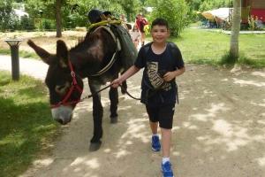Retournac : deux séjours en juillet avec des ânes bâtés dans les gorges de la Loire