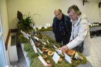 Saint-André-en-Vivarais : le champignon sous toutes ses formes ce week-end