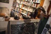 Dans la bibliothèque, un bestiaire en métal qui ne doit rien à Cathy Gagnaire. Il est à mettre à l'actif de Michel Chacornac, sculpteur de Saint-Pierre-Eynac.