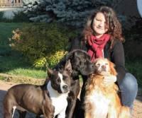 Brioude : elle veut créer une pension pour chiens et chats
