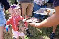Chaudeyrolles : le Mézenc qui se déguste avec les yeux, les jambes et le ventre