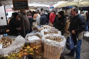 Tous à Saint-Bonnet-le-Froid pour la Fête des champignons les 2 et 3 novembre