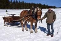 Les Estables : il propose des balades sur la neige... en traîneau