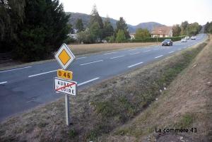 Projet de Lidl à Aurec-sur-Loire : c'est aux électeurs de choisir