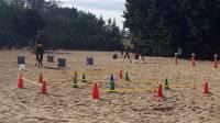 Trois compétitions scolaires en équitation
