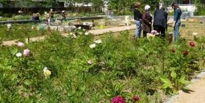 Saint-Agrève : une journée découverte du jardin partagé