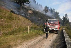Monastier-sur-Gazeille : un mégot de cigarette jeté, 5 hectares de végétation en feu