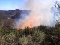 Feu de forêt : près de 4 hectares détruits à Belsentes suite à un écobuage