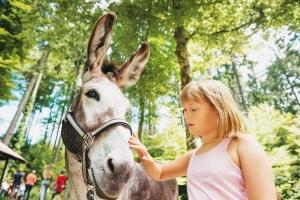 Mazet-Saint-Voy : l'Arche de l'Aulagnier propose des animations autour des animaux