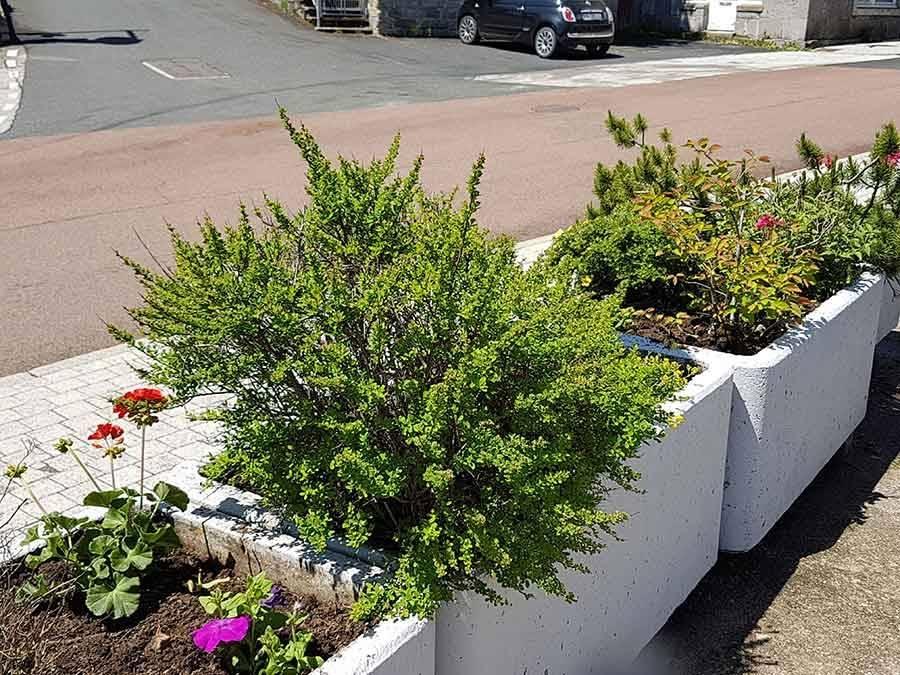 Le Mazet-Saint-Voy : 700 plants et des bonnes volontés pour fleurir le village