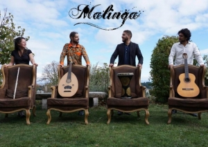 Monistrol-sur-Loire : le concert de Malinga annulé
