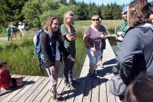 Mille façons de découvrir les amphibiens cet été à Freycenet-la-Tour