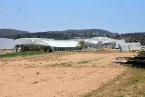 Monistrol-sur-Loire : Au Fil de l'eau construit un bâtiment en bois pour un confort indispensable