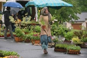 La pluie avait fait des claquettes l'an passé à la Fête des plantes