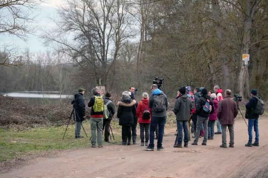 Une sortie sur les étangs de Bas-en-Basset avec les Rencontres naturalistes