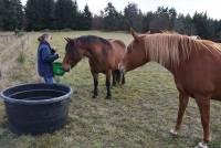 Mazet-Saint-Voy : Acama 43 est le meilleur ami des animaux