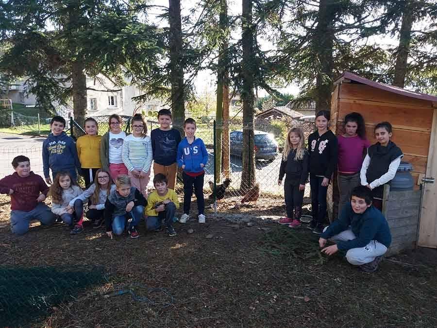 Retournac : deux poules et un coq accueillis à l'école de Jussac
