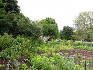 Douze jardiniers amateurs ouvrent leurs potagers les 15 et 16 juin en Haute-Loire