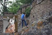Espaly-Saint-Marcel : un chaton prisonnier du rocher Saint-Joseph