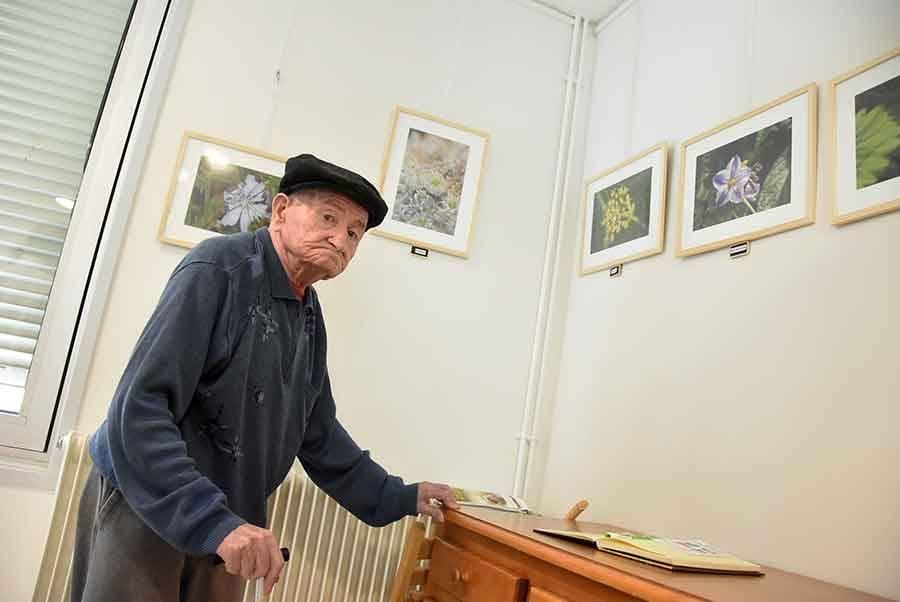 Le Chambon-sur-Lignon : les fleurs de fruits et légumes vus par Denis Pasquet