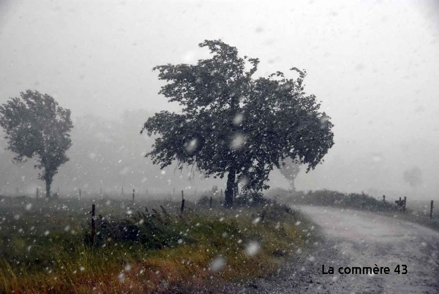 Agriculture : Aurec, Bas, Malvalette et Valprivas particulièrement touchés par les orages de samedi