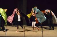 Les jeunes de la classe Ulis ont partagé la scène avec des danseuses.