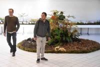 Une forêt de champignons reconstituée à Saint-André-en-Vivarais