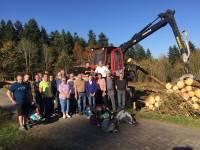 Auvergne-Rhône-Alpes : 37 millions sur 5 ans pour la filière forêt-bois
