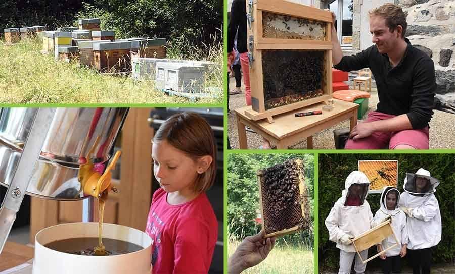 Yssingeaux : une conférence sur le miel, les abeilles et les reines jeudi prochain