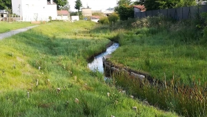 Saint-Just-Malmont : le parc paysager est prêt à ouvrir pour une balade ludique