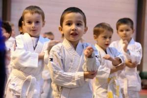Saint-Ferréol-d'Auroure : près de 500 jeunes judokas au tournoi