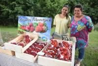 Les fruits rouges, incontournables de l'été en Haute-Loire, ici avec la Ferme de Joux.
