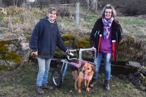Mazet-Saint-Voy : un prototype conçu par l'Acama pour aider un chien handicapé